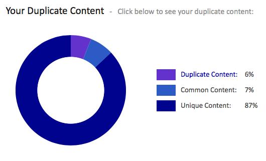 Rapport Contenu Dupliqué